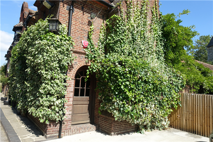 fordwich-arms 5472 outside-crop-v2.JPG