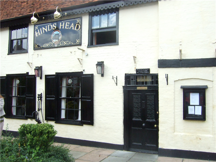hinds-head 3648 front-crop-v2.JPG