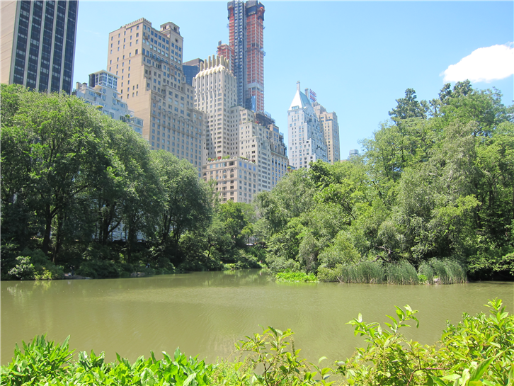 new-york 3648 central park apartments-crop-v3.jpg