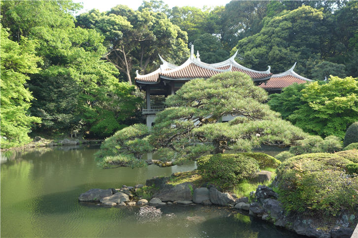 tokyopark 5472 tea house-crop-v2.JPG